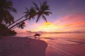 The Maldives - photo credit Visit Maldives